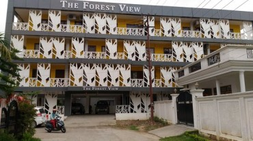 The Forest View Hotel Image