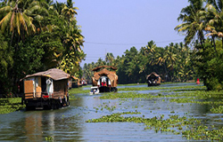 Image 8 Days Backwater and houseboat tour in Kerala