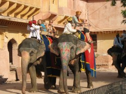 Golden Triangle Tour with Rajasthan Thumb